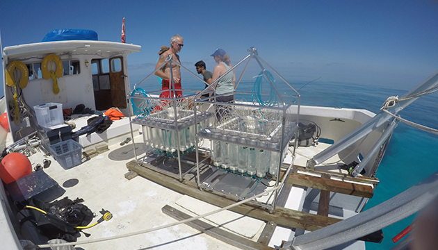 <p> 1.2 Water sampler (RAS-500, McLane) filled with water samples on deck of the BIOS boat Stommel. Water samples are used to measure total alkalinity. Photo: Sawall</p>