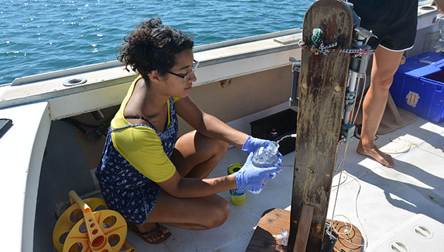 <p> 	Lakshmi Magon's research project focused on marine bacterioplankton succession and overturn at Devil's Hole, in Harrington Sound, Bermuda. Specifically, she looked for inter-annual variations of specific baterioplankton lineages during periods of low oxygen.</p>