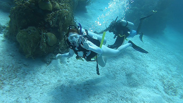 <p> 	In addition to laboratory-based investigations, students also get to explore Bermuda's marine environment and practice field research techniques on afternoon snorkeling and SCUBA excursions. Photo by Immie Peckett.</p>