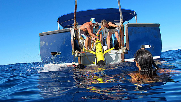 <p> 	REU interns assist with BIOS&#39;s glider recovery offshore Bermuda.</p>