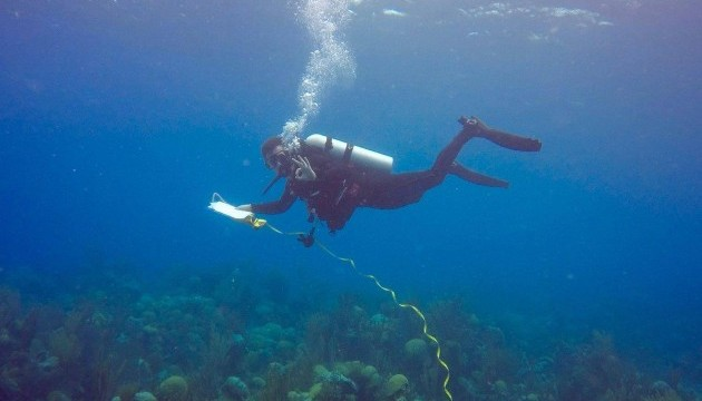 <p> Conducting an underwater transect.</p>