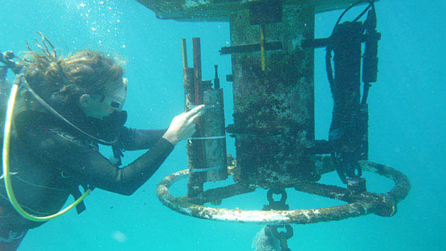 <p> 	Underwater research on ocean acidification and coral reefs.</p>