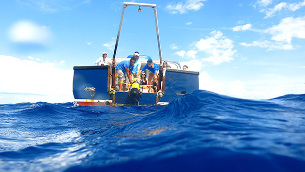 <p> 	REUs look on as researchers deploy BIOS&#39;s newest glider 5 miles offshore.</p>