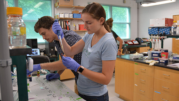 <p> 	Julia, an undergraduate at Lehigh University, works in the Microbial Ecology Laboratory adding an oligonucleotide probe to filters. </p>