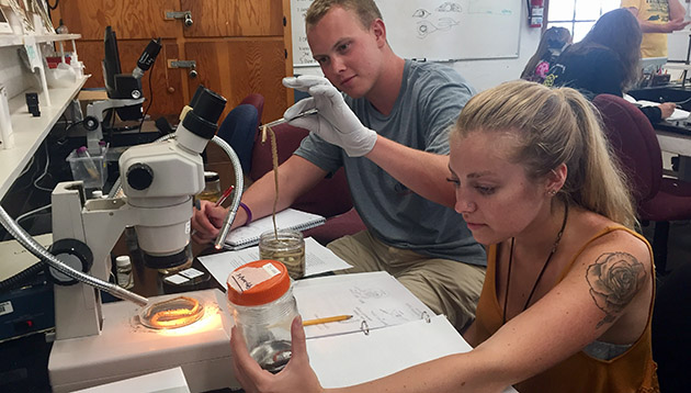 <p> Students particpate in a marine worm lab for the fall semester Marine Invertebrate Zoology course.</p>