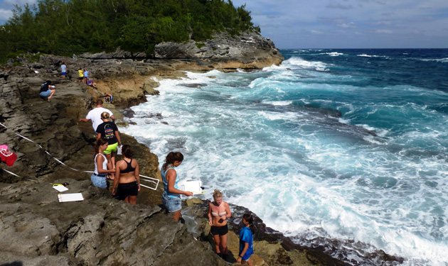 <p> 	The Marine Invertebrate Zoology class conducts intertidal rocky shore invertebrate surveys at Spittal Pond.</p>