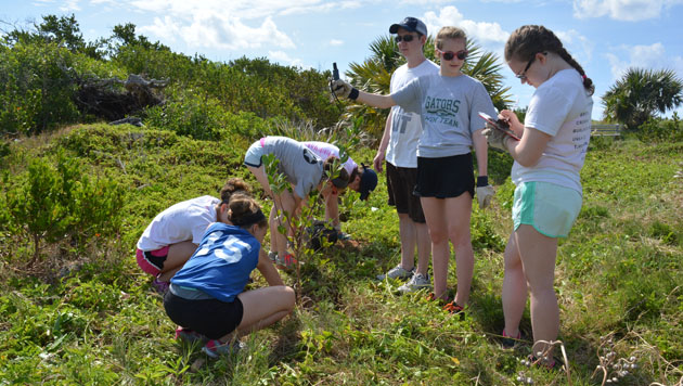 <p> 	A group of students participate in tree planting and a beach clean-up as a part of BIOS's partnership with the Bermuda Marine Debris Taskforce at Copoper's Island Nature Reserve.</p>
